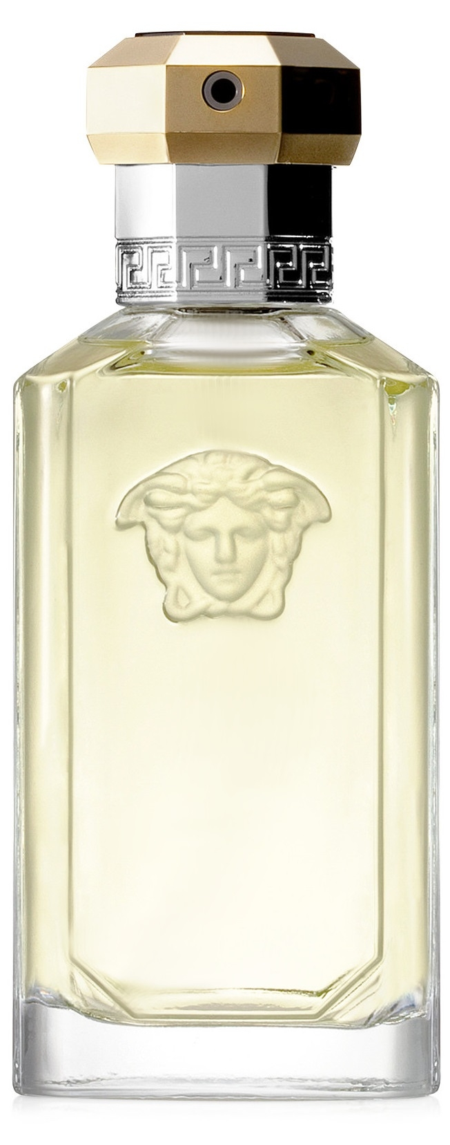 Versace The Dreamer (M) edt 100ml